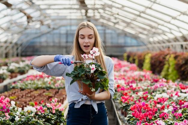 Kobieta cięcia kwiatów dodatkowych liści