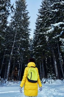 Kobieta ciemny las, spaceruj po lesie przed świętami bożego narodzenia