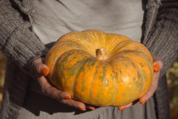 Kobieta daje dojrzałą pomarańczową okrągłą dynię