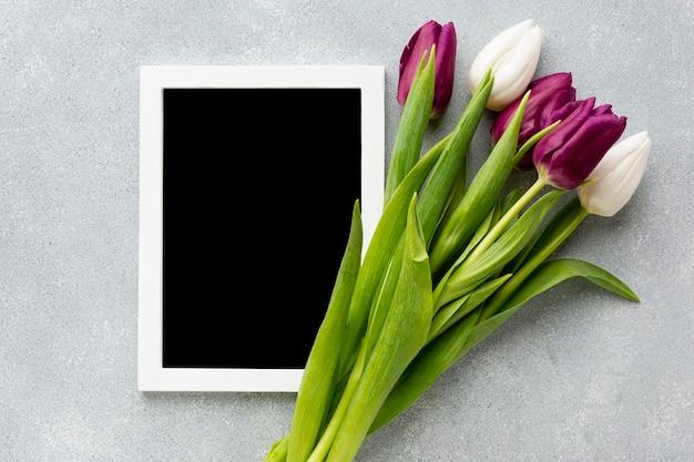 Kobieta dnia pojęcia skład z pustym blackboard