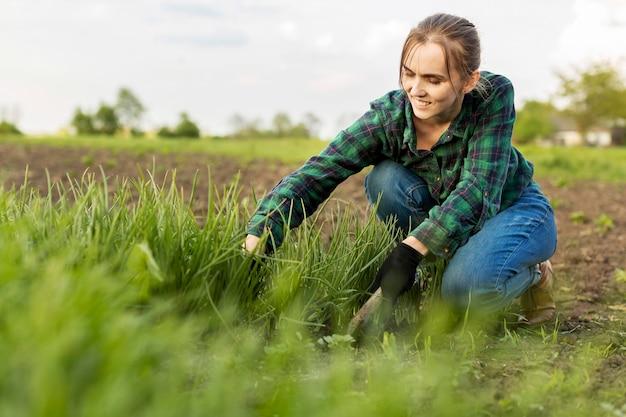 Kobieta do zbioru warzyw