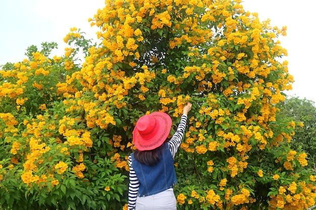 Kobieta dotyka bukietu pięknych kwiatów trąbki kwitnących na drzewie