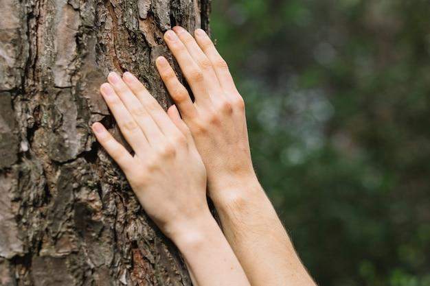Kobieta dotyka drzewa z obu rąk