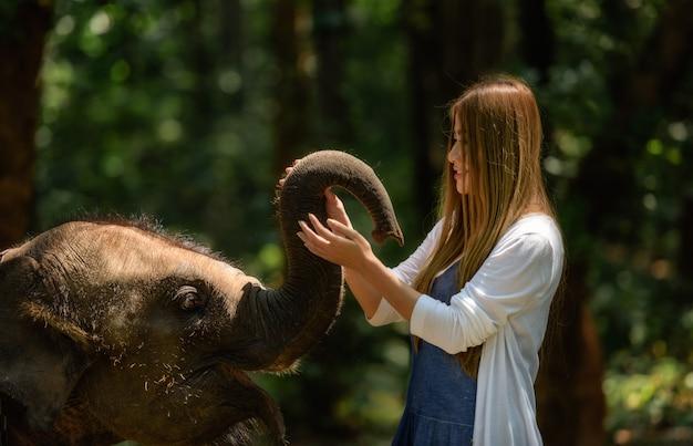 Kobieta dotyka słonia z wszystkie jej sercem w tajlandia.