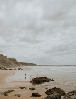 Kobieta i pies na plaży w ciepły, ponury dzień