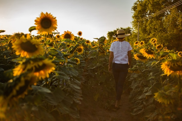 Kobieta idąc ścieżką między słoneczniki w białej koszulce, dżinsach i kapeluszu