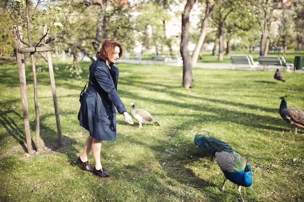 Kobieta idzie wśród pawi w publicznym parku w pradze