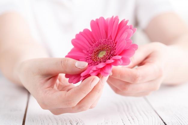 Kobieta koncepcja opieki medycznej, różowy kwiat gerbera w ręku