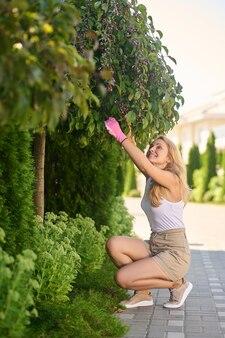 Kobieta kucająca przycinająca gałęzie przy drzewie