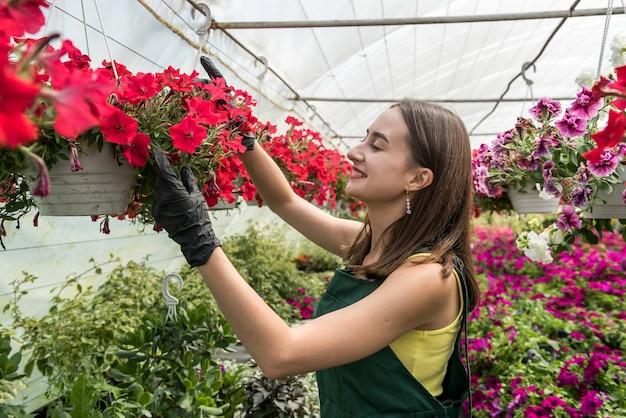 Kobieta kwiaciarnia w kombinezonie dba o kwiaty w szklarni. wiosna