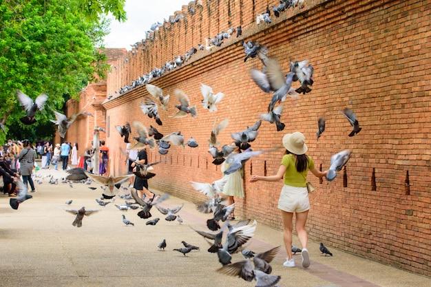 Kobieta lubi spacery i starożytne mury i fosy phae gate chiang mai w północnej tajlandii