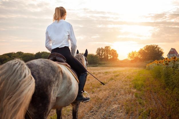 Kobieta na szarym koniu w polu o zachodzie słońca. jazda konna, wynajem, piękne tło, domek. przyjaźń i miłość ludzi i zwierząt. zwierzę domowe. sport jeździecki