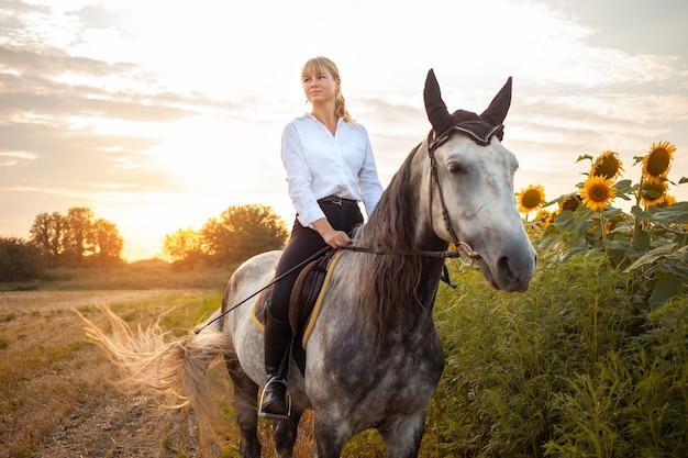 Kobieta na szarym koniu w polu o zachodzie słońca. spacery, jazda konna, wypożyczalnia. piękne tło, natura na zewnątrz. trening sportów jeździeckich. skopiuj miejsce. magiczne światło