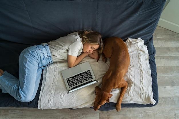 Kobieta odpoczywa leżąc na kanapie w pracy na laptopie z pięknym psem wyżeł węgierski krótkowłosy w domu widok z góry. leniwa rozrywka