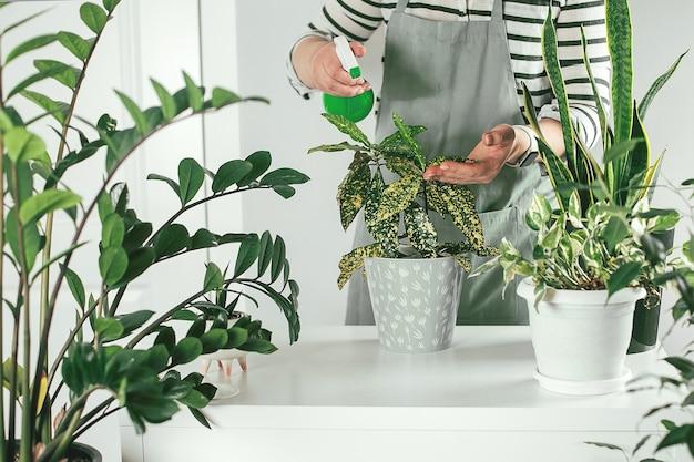 Kobieta ogrodnicy podlewania roślin w domu z bliska