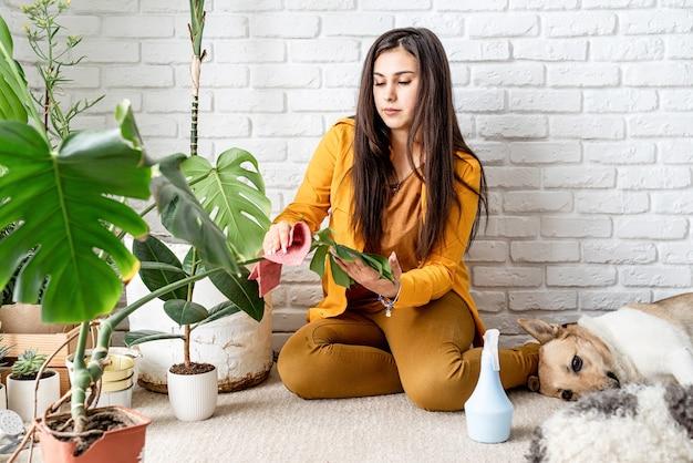 Kobieta ogrodniczka dba o swoje domowe rośliny ogrodowe