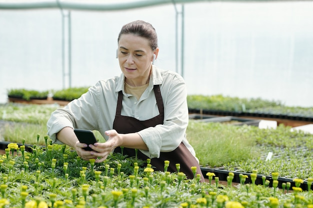 Kobieta ogrodniczka ogląda wideo online o pielęgnacji sadzonek kwiatów