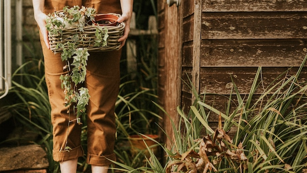 Kobieta ogrodniczka trzymająca kosz z roślinami