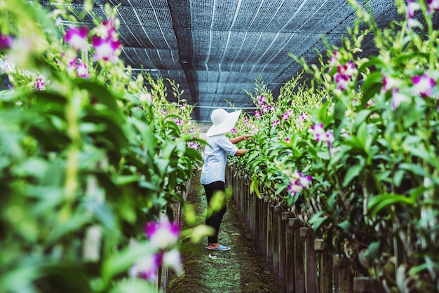 Kobieta ogrodnik azjatycki
