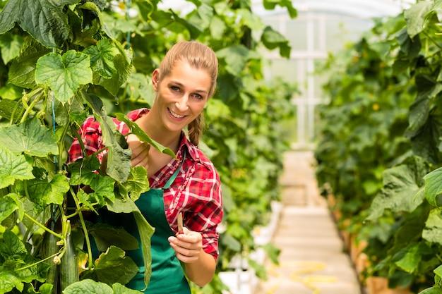 Kobieta ogrodnik w ogrodzie rynku lub przedszkola