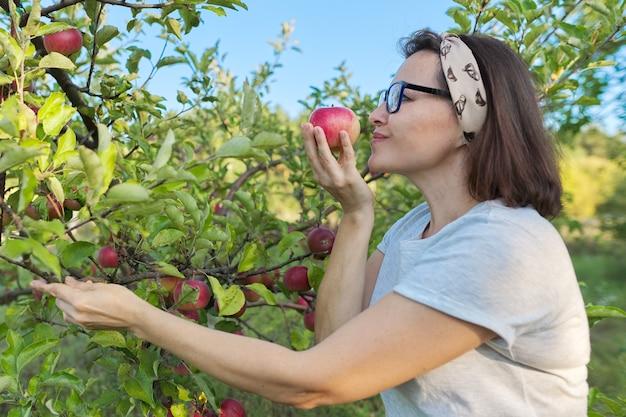 Kobieta ogrodnik ze świeżo zebranym czerwonym jabłkiem w ręku, tło jest drzewo z jabłkami. samica zjada naturalne, przyjazne dla środowiska jabłko wyhodowane w przydomowym ogródku, kopia przestrzeń
