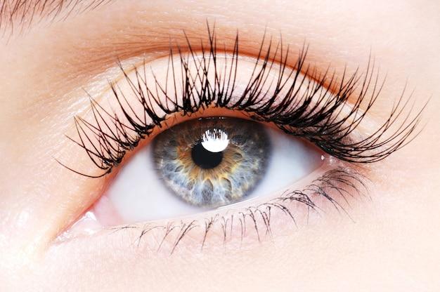 Kobieta oko z podkręconymi sztucznymi rzęsami - niski kąt widzenia