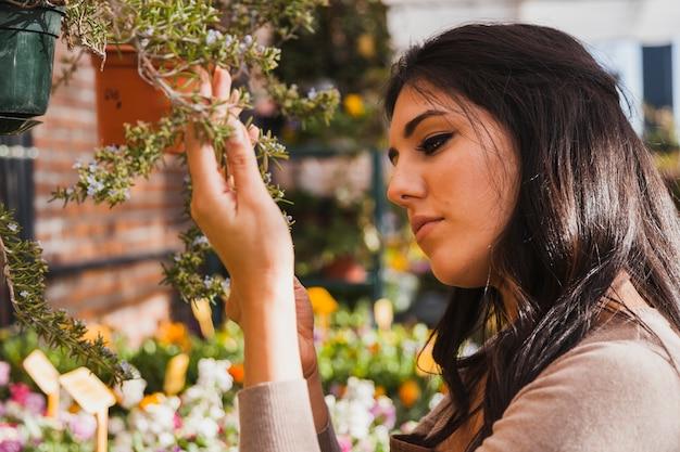 Kobieta patrzeje rośliien sprigs