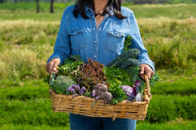 Kobieta pokazuje warzywa w koszu