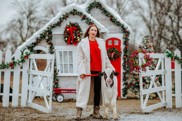 Kobieta pozuje z młodym bykiem czarno-białym na boże narodzenie ranczo z wakacyjnym wystrojem.