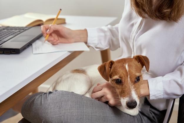 Kobieta pracuje w domu i za pomocą laptopa