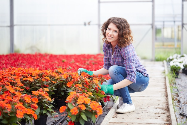 Kobieta pracuje w ogrodowym sklepie
