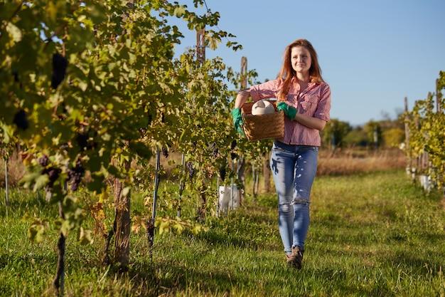 Kobieta pracuje w winnicy