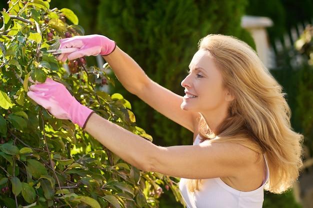 Kobieta przycinająca gałęzie na drzewie w ogrodzie