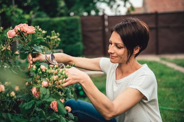 Kobieta przycinanie róż w ogrodzie przydomowym