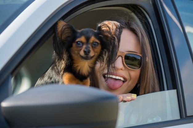 Kobieta psi samochodowy podróżować