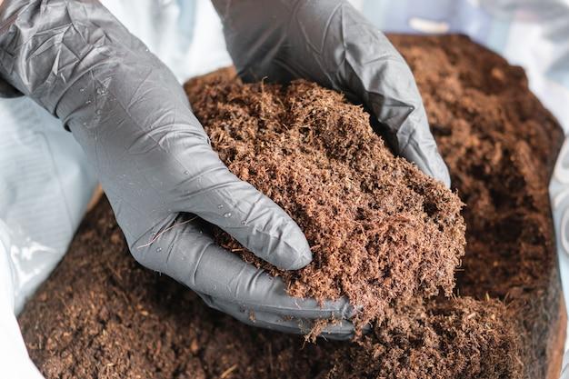 Kobieta ręce w czarnych gumowych rękawiczkach przygotowujących ziemię lub glebę do sadzenia roślin w doniczce