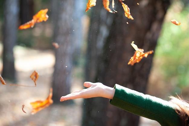 Kobieta ręcznie jesienne liście w przyrodzie