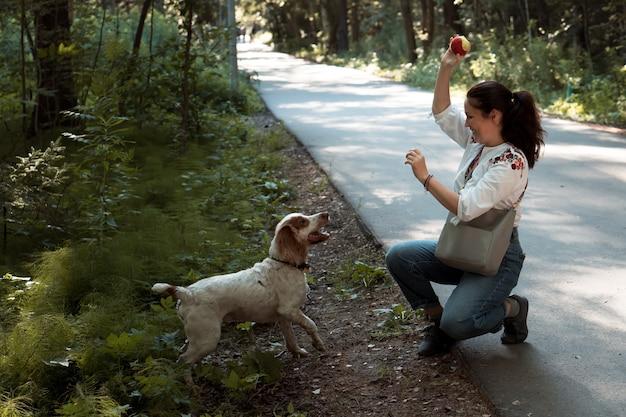 Kobieta rzucająca piłkę i tresura psa rasy rosyjski spaniel w parku