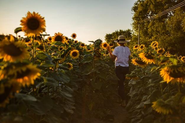 Kobieta stojąca na ścieżce między słoneczniki w białej koszulce, dżinsach i kapeluszu