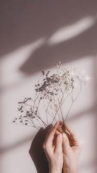 Kobieta trzyma białe kwiaty na różowym tle
