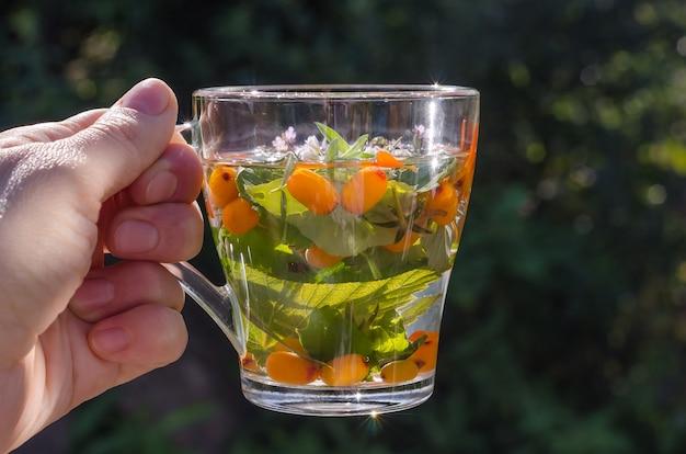 Kobieta trzyma filiżankę herbaty ziołowej z melisą i rokitnikiem na naturze. zdrowy tryb życia
