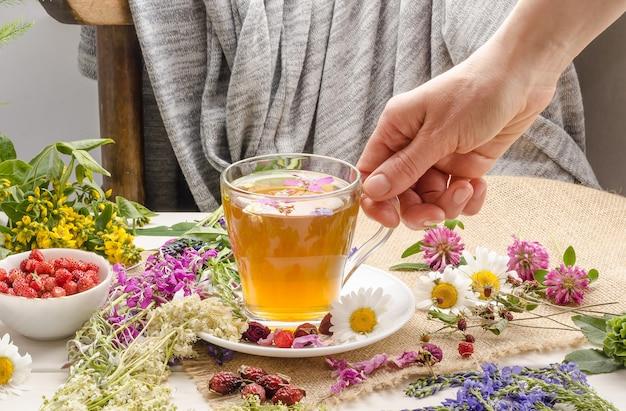 Kobieta trzyma kubek z herbatą ziołową. herbaciana ceremonia. kwitnąca sally. letni napój
