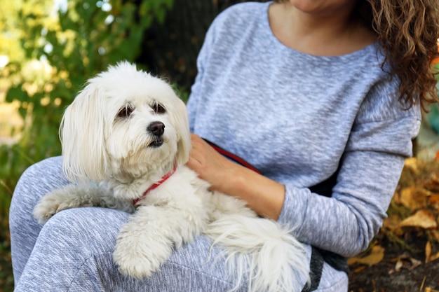 Kobieta trzyma ładny pies, zbliżenie