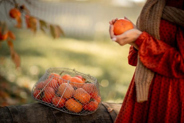 Kobieta trzyma w rękach dojrzałe zbiory mandarynek.