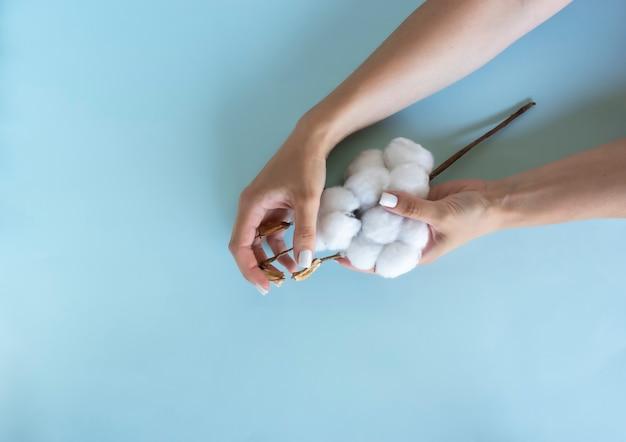Kobieta trzyma w rękach gałązkę bawełny