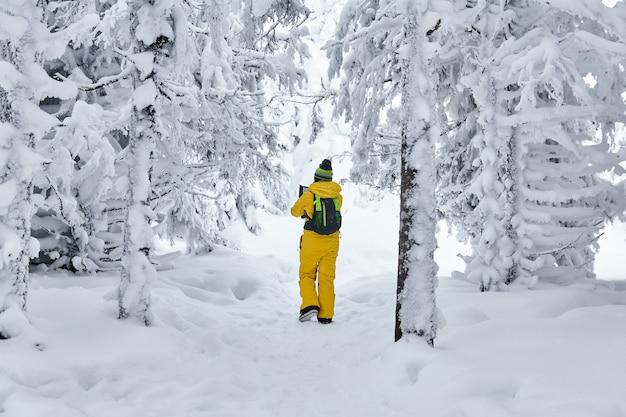 Kobieta turysta spacerująca po zaśnieżonym zimowym lesie, patrząca na podręczny komputer