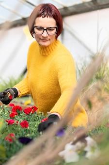 Kobieta uprawia rośliny
