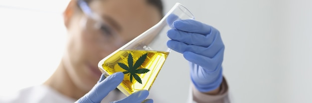 Kobieta w gumowych rękawiczkach, trzymając szklaną kolbę z ekstraktem konopi zbliżenie. laboratorium farmaceutyczne do produkcji koncepcji środków odurzających.