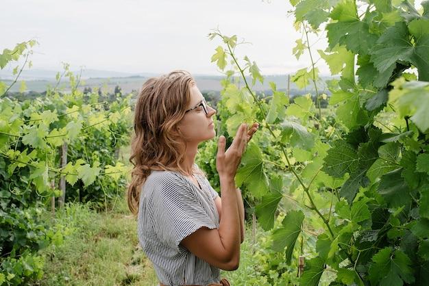 Kobieta w letniej sukience spacerująca po winnicy pachnąca winogronami