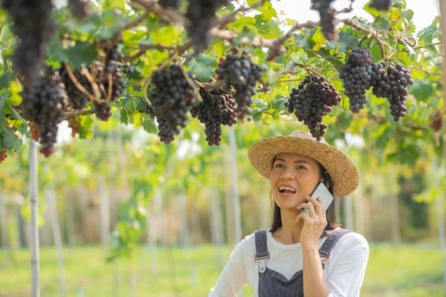 Kobieta w ogrodzie przy użyciu telefonu komórkowego do przyjmowania zamówień na jej winogrona.